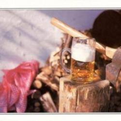 Postkarte-Ansichtskarte-Bayern-B24