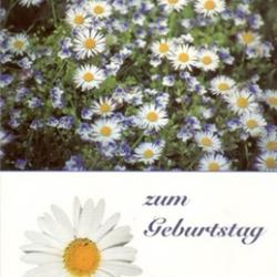 Postkarte-Ansichtskarte-Blumen-G18