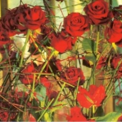 Postkarte-Ansichtskarte-Blumen-G7