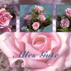 Postkarte-Ansichtskarte-Blumen-G9